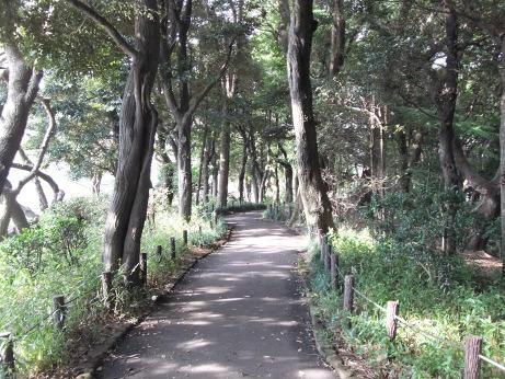 20111204_yuhodou2