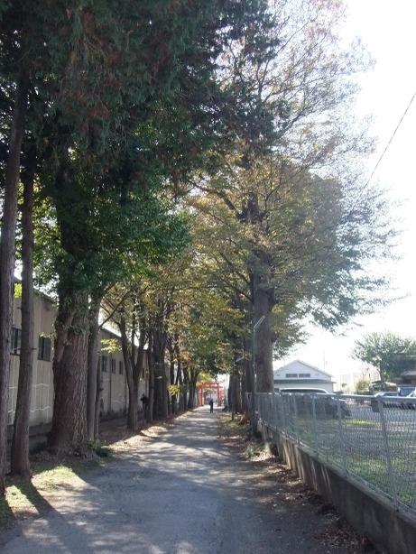 20111208_sandou