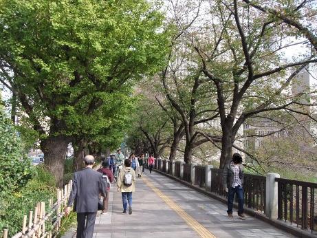 20111209_sakamichi