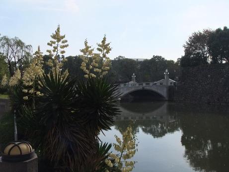 20111209_takebashi