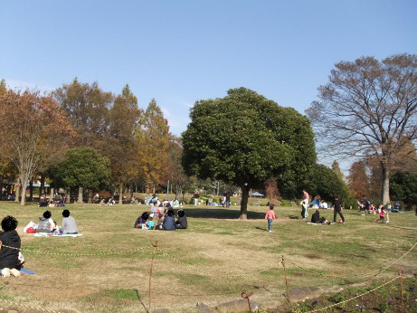 20111210_park2
