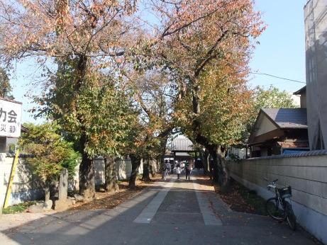 20111217_sandou