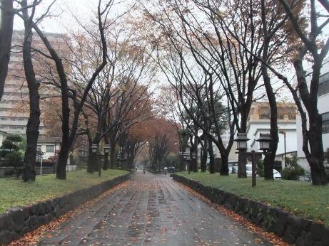 20111225_hikawasandou3