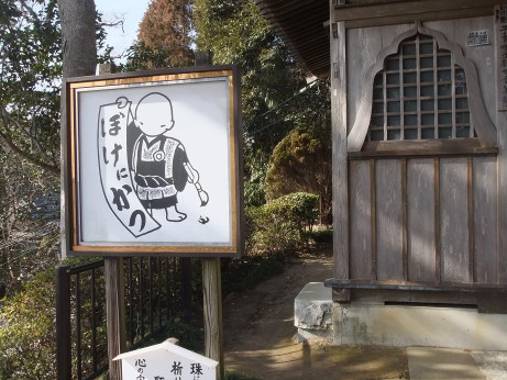 20120218_bokenikatsu