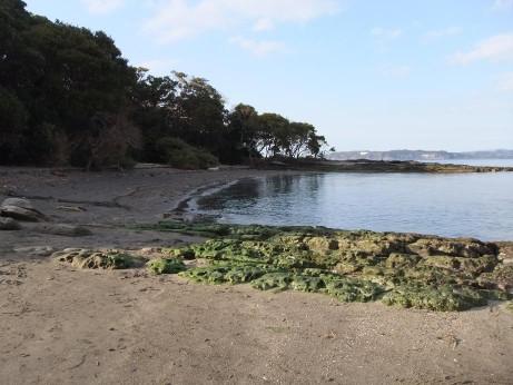 20120224_okinoshima4