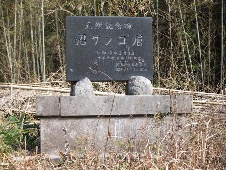 20120306_kinenhi