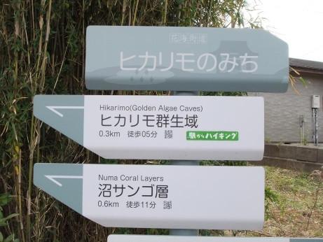 20120306_yukisaki