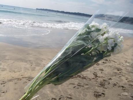 20120330_flower