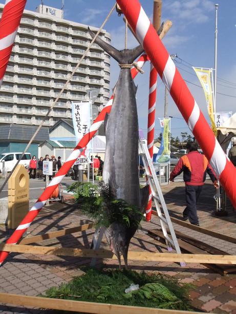 20120330_maguro1