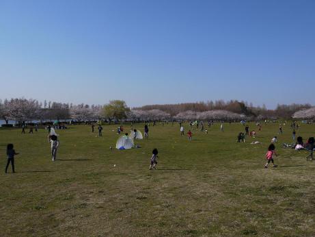 20120410_misato_park10