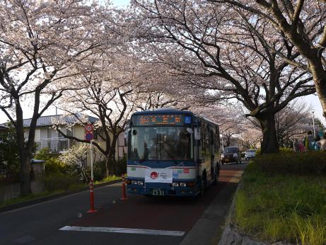 20120411_mizumoto_park07