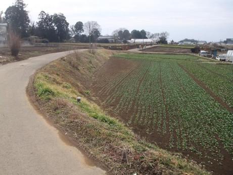20120412_road02