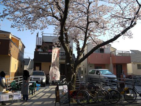 20120416_hannari