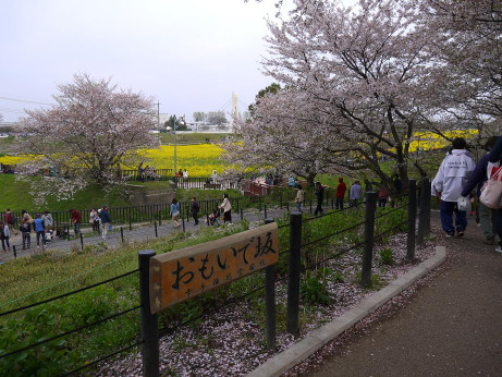 20120417_omoidezaka