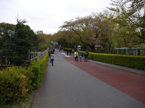 20120424_road
