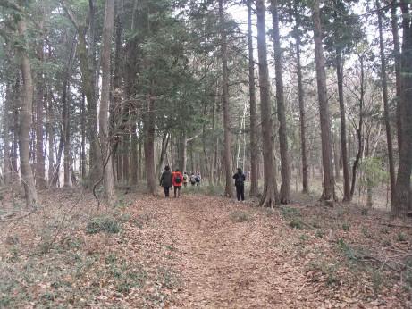 20120429_okumusashi2