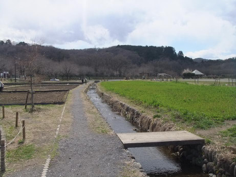 20120510_kincyakuda2
