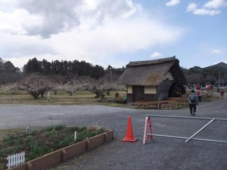 20120510_kincyakuda4