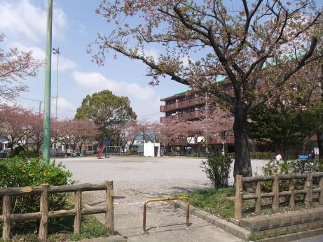 20120517_dai2_park