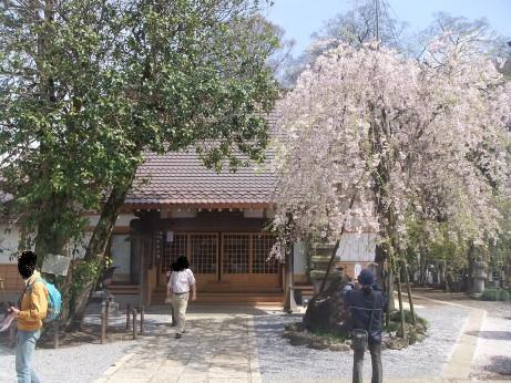 20120517_koumyouin2