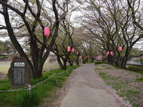 20120529_yuhodou