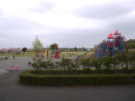 20120530_oyama_park4
