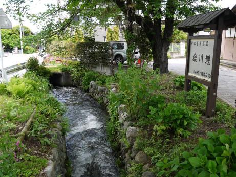 20120605_ogawazeki02