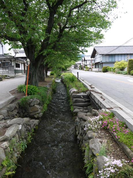 20120605_ogawazeki04