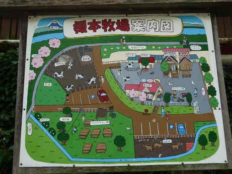 20120607_annaizu