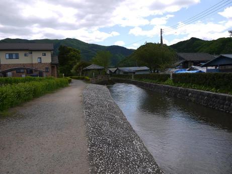 20120615_ogawazeki3