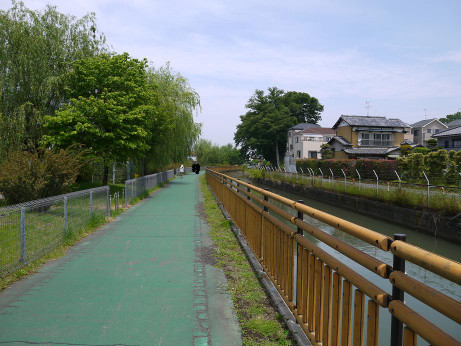 20120623_helthy_road02