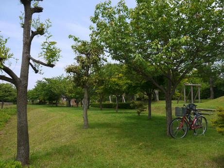 20120624_park2