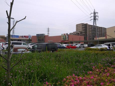20120624_unikusu