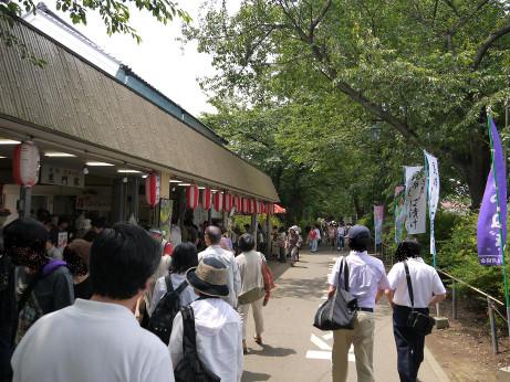 20120628_tsukemono1