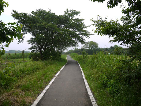 20120702_road_03