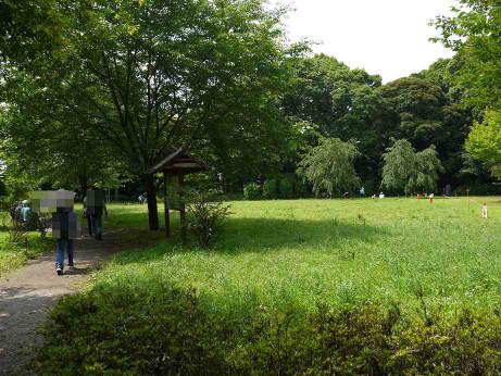 20120711_negiuchi_rekishi_park04