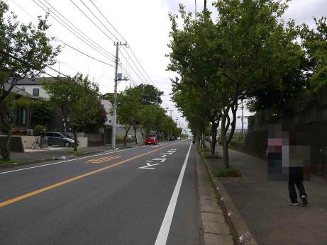 20120715_anzu_dori