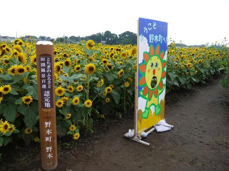 20120723_himawari05