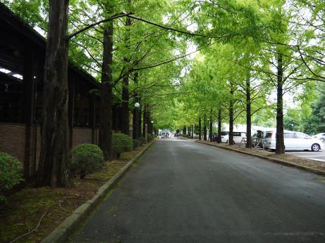 20120724_road01