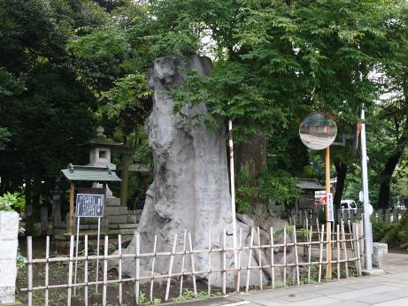 20120806_ookeyaki