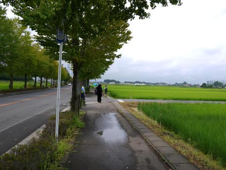 20120807_road03