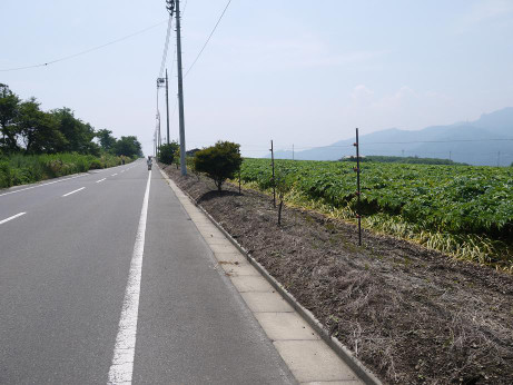 20120815_road04