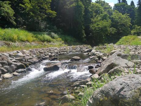 20120821_river2