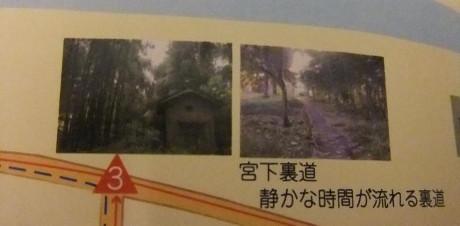 20120828_miyashita_uramichi