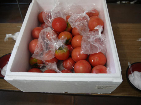 20120910_tomato