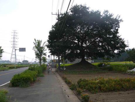 20120920_ichirizuka1