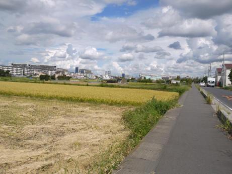 20121004_misato_danti2