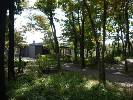20121011_park