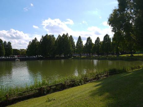 20121017_lake2