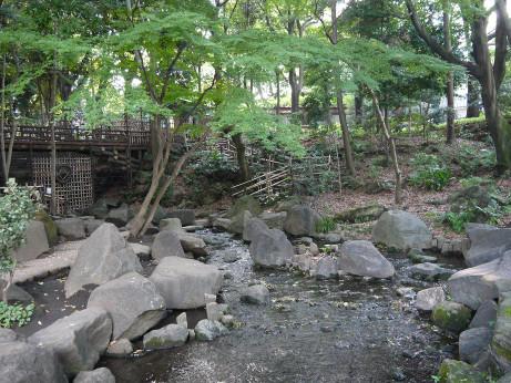 20121027_togoshi_park4